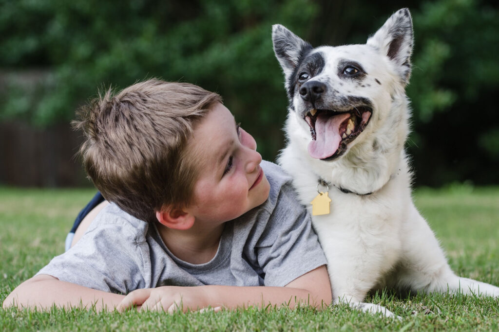 Dog safety tips to avoid bites: Child playing with his pet dog
